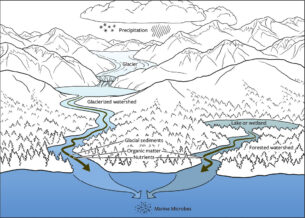 Icefield to Ocean flow diagram – Emily S. Damstra