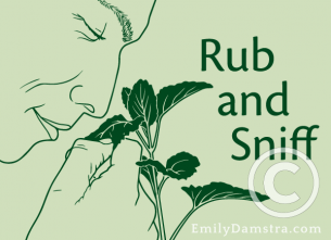 Rub and Sniff – Emily S. Damstra