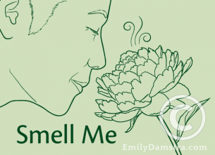 Smell Me – Emily S. Damstra