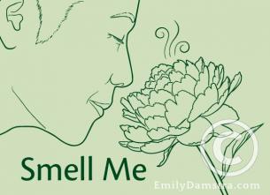 Smell Me illustration