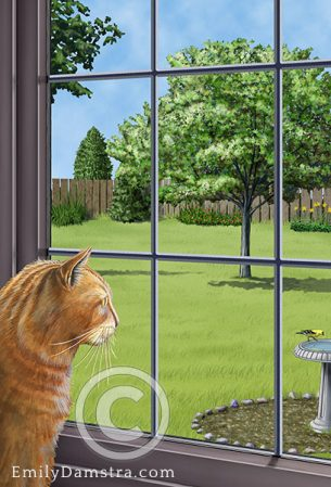 Cat looking out window – Emily S. Damstra