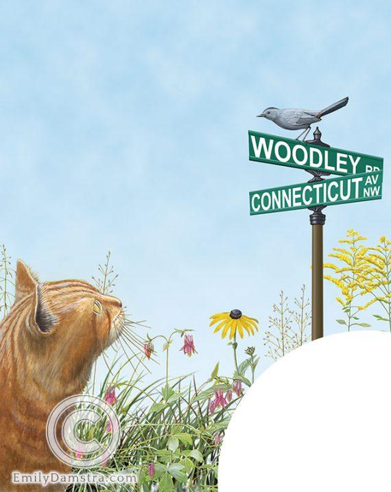 Outdoor cat eyeing bird illustration