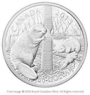 Beaver family 2013 silver coin