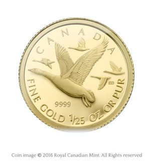 Canada geese gold coin