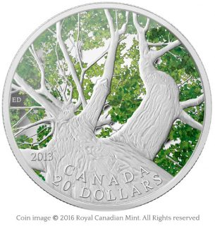 Maple canopy 2013 silver coin