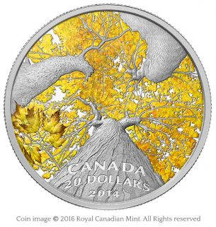 Maple canopy 2014 silver coin