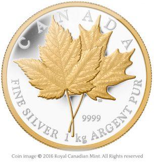 Maple leaves kilogram coin